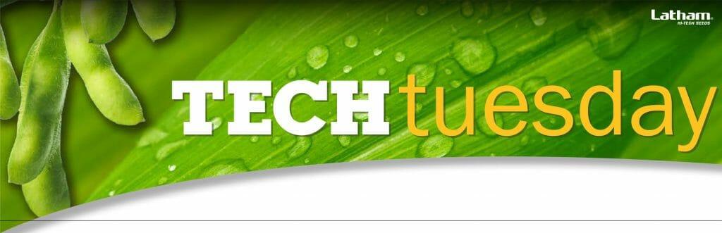 Tech Tuesday Header 01