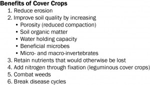 Benefits_CoverCrops