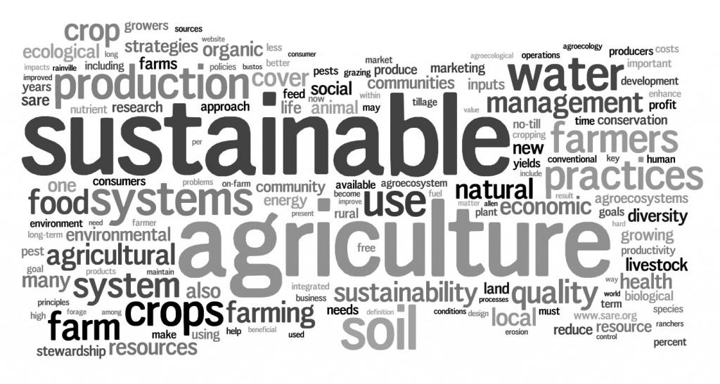 Sustainable Ag Wordle
