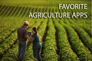 Husband and wife farmers standing in their mid growth soybean field