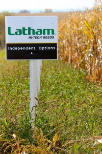 LathamCorn