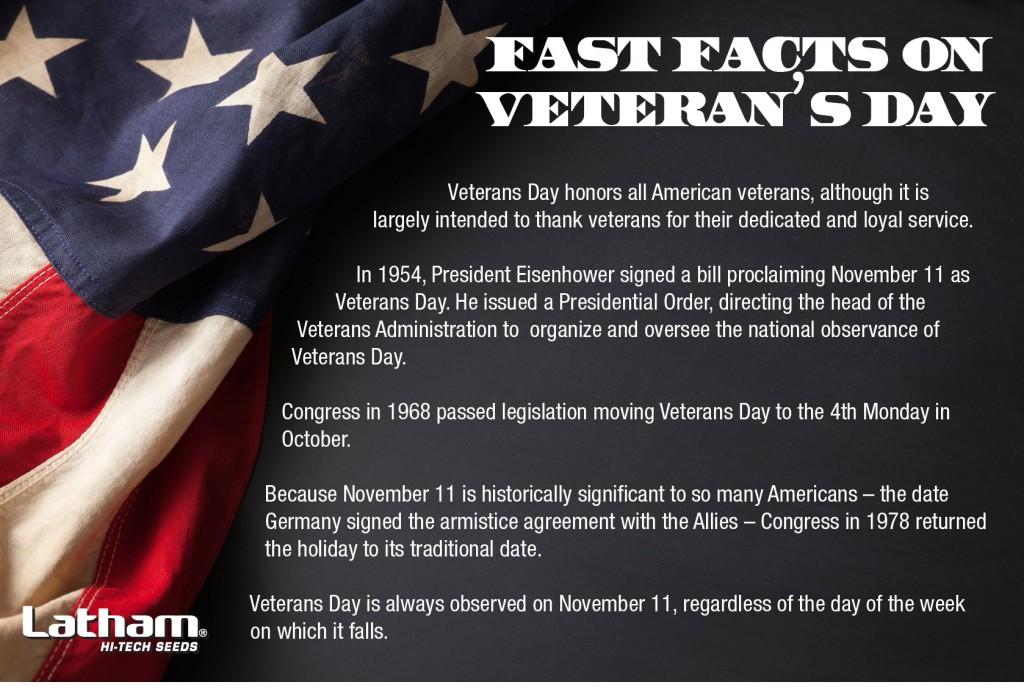 VeteransDayInfo