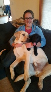 Jenna with puppies, Latham and Topper