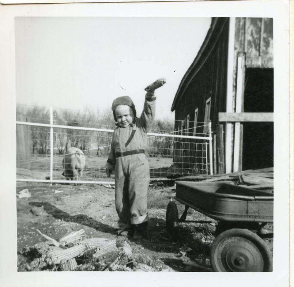 Larry Sailer Musings of a Pig Farmer
