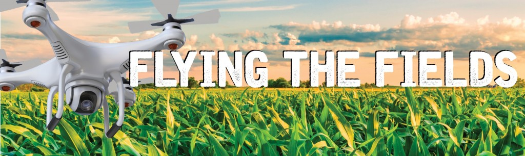 flying-the-fields-masthead