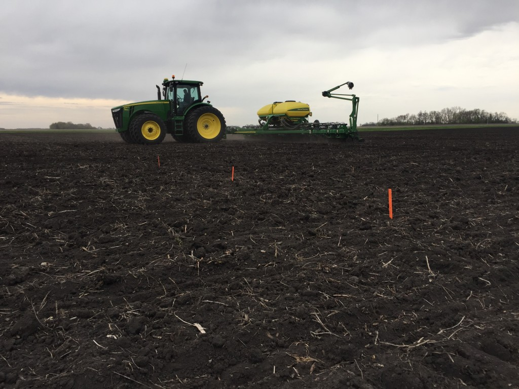 A Latham corn SuperStrip plot went in the ground near Morgan, Minnesota this week. These tests, which are proprietary to our company, play a key role in helping us select our product lineup as existing and experimental products are tested across multiple locations each year.