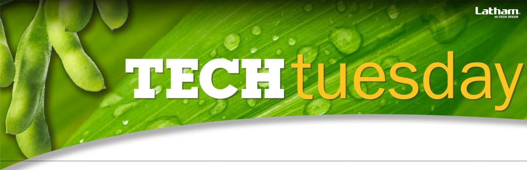 Tech Tuesday Header 01