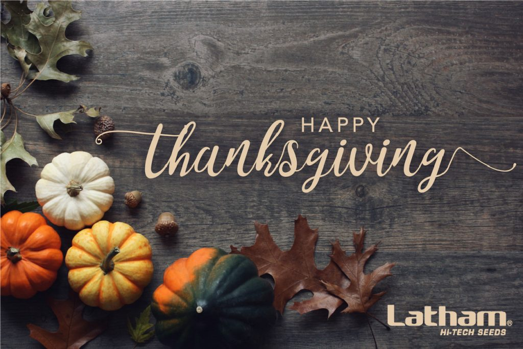 2018 Thanksgiving Graphics 01