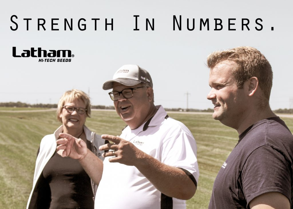Strength in numbers 01
