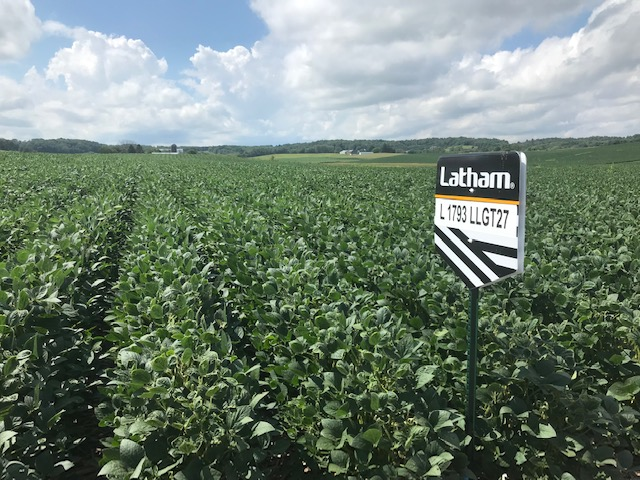 N Wisco Crop Report 1793 LLGT27 Latham Seeds 081419