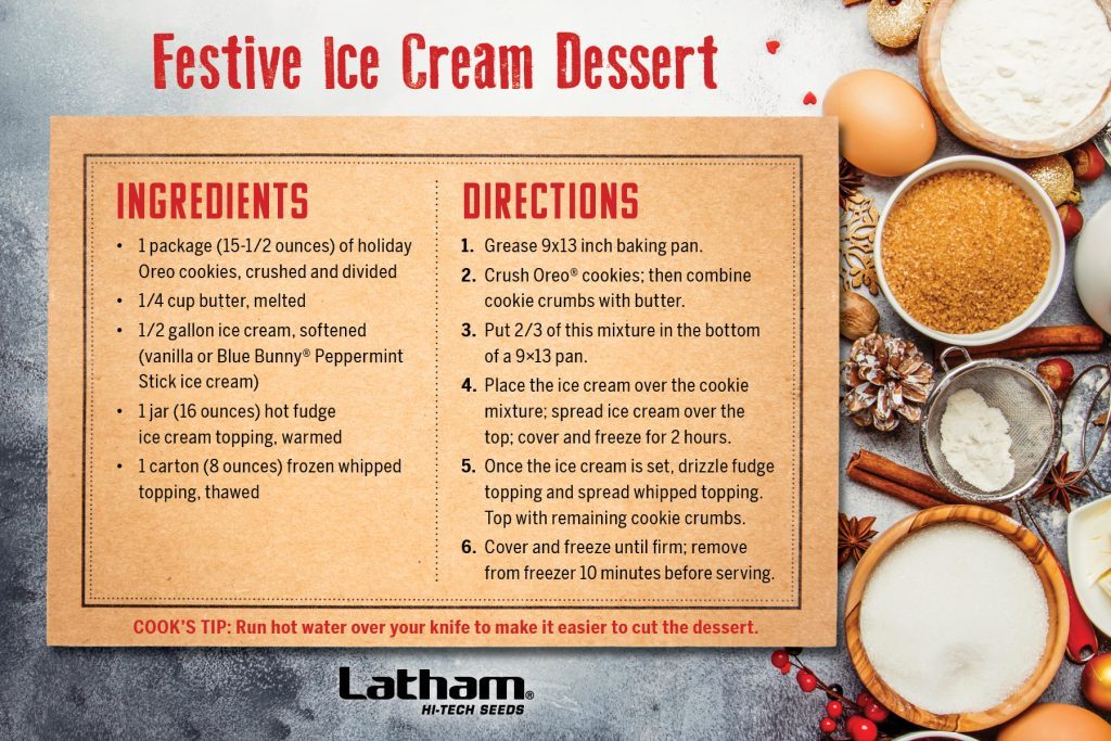 Festive Ice Cream Dessert recipe card