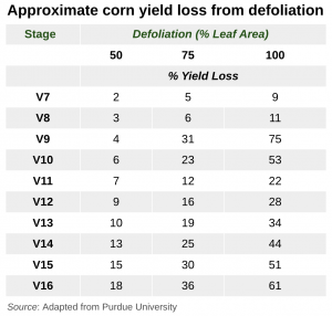 Corn Defoliation and Yield Loss (1)