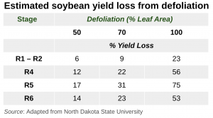 Soybean Defoliation and Yield Loss (1)