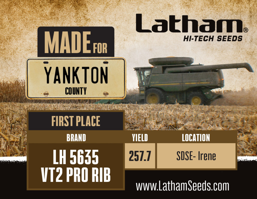 5635 yankton graphic