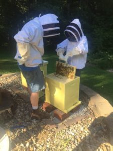 Gus & me hive inspection 2017