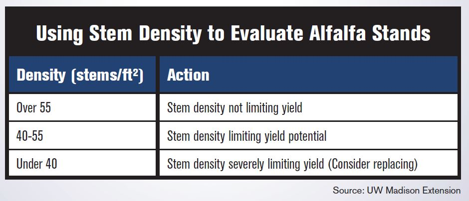 Stem Density
