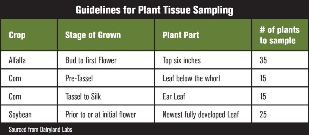 Tissue Sampling